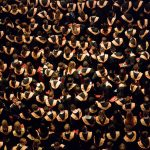 The Value of a Master's Degree